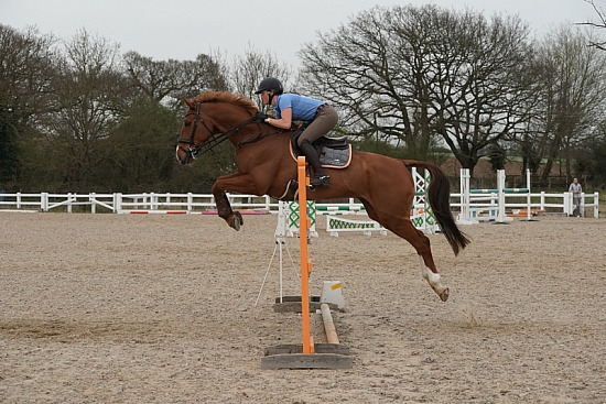 Senior BS Training Show, Brook Farm, Wednesday 31st March